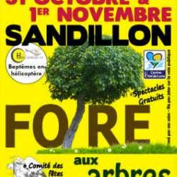 Foire aux arbres Sandillon (45)